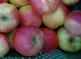 Äpfel süsslich