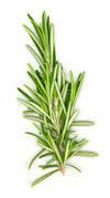 Rosemary Whole