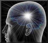 Cerveau en santé - optimiser sa mémoire et concentration