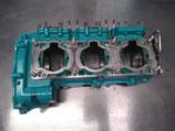 STX 900 carter moteur