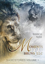 Moments@Bruns_LLC (Shortstories Volume 1)