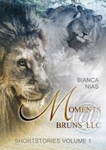 Moments@Bruns_LLC (Shortstories Volume 1)