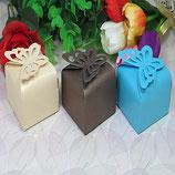 Schmetterling Schachtel