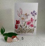 Little Viola - bloemenveld