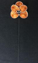 Orchidee orange-grau