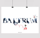 BALTRUM BRUSH