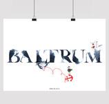 BALTRUM BRUSH