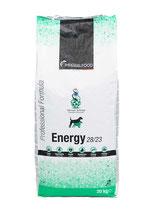 Energy (28/23)