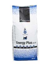 Energy Plus (30/26)