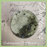 Eukalyptus Pfefferminz Scent shot klein