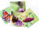 Schmetterlings-Kartenset