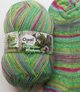 Opal Sockenwolle Schafpate, 100g, 4-fach, grün Töne mit pink und türkis