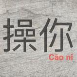 Plotterdatei 'Cāo nǐ'