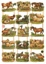 CROMOS ANIMALES GRANJA 7295
