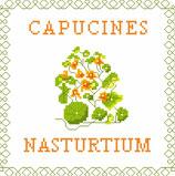 Capucines