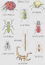 Insectes au Logis
