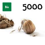 5000 bolbos bio calibre 10-11