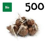 500 bolbos bio calibre 9-10