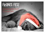Postkarte, liegender Hund mit Mütze