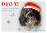 Postkarte, sitzender Hund mit Mütze