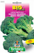 CAVOLO Broccolo ramoso Calabrese medio precoce