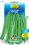 FAGIOLO nano Top Crop