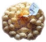 Bulbi di Cipolla Bianca da seme 500g