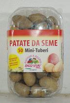 Patate da Seme VARIETA' SPUNTA in Confezione da 50 Mini TUBERI
