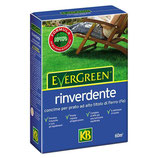 CONCIME EVERGREEN  RINVERDENTE KG 2