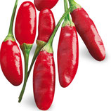Peperoncino piccante VERY HOT Calabrese diavolicchio