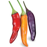Peperoncino piccante HOT Eureka lungo multicolore