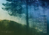 Postkarte/Fotoposter/Acrylglasfoto: Nachtgebet I