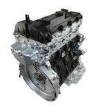 220 CDI (OM651.955-956-957) Sprinter 210 CDI / 313 CDI / 516 CDI
