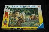 """Puzzle Ravensburger """"Pferdegeflüster"""""""