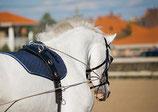 Anzahlung / Terminreservation Pferde-Coaching (TKPC)