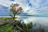 "METAL PRINTS OF ""HOMES CREEK EMPTIES INTO LAKE CHAMPLAIN"""
