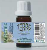 Synergie TERRE 10ml