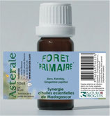 Synergie Forêt primaire 10ml