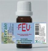 Synergie FEU 10ml