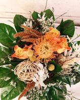 Protea Orange Touch
