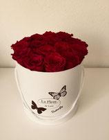 Butterfly Flowerbox weinrot