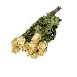 10 Trocken Rosen weiß