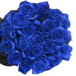 10 Blaue Vendela Rosen