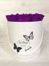 BUTTERFLY FLOWERBOX LILA