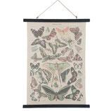 "Wandkarte ""Schmetterlinge"" von Clayre & Eef"