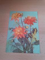 Ansichtskarten - Blumenkarte