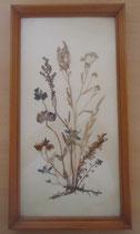 Bild mit gepressten Blumen - DDR - Nr. 6