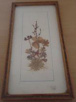 Bild mit gepressten Blumen - DDR - Nr. 10