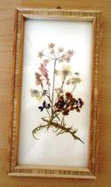 Kleines Bild mit gepressten Blumen - DDR