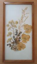Bild mit gepressten Blumen - DDR - Nr. 2